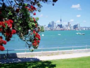 Auckland Tagestouren Rundreise Neuseeland Urlaub deutsche Reiseführer Tourguides Mietwagenreisen Gruppenreise Neuseelandspezialist