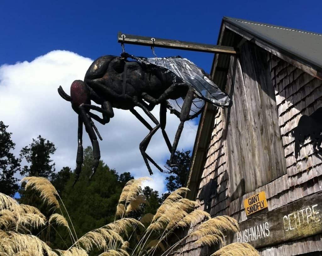 Sandflies Neuseeland Insekten Urlaub Westjüste Südinsel rundreise gruppenreise tipps neuseeland