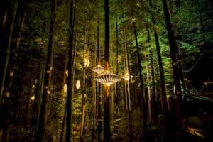 Rotorua Wald Treewalk Gruppenreise Selbstfahrer Mietwagenreise Rundreise deutsch reiseleiter neuseeland experte luxusreise vip premium reiseveranstalter auckland