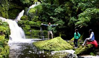 neuseeland rundreisen Catlins McLean-Falls neuseelandurlaub individualreise wandern neuseelandurlaub gruppenreise individualreise