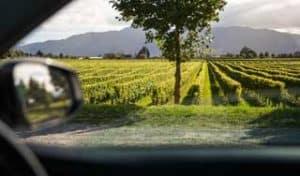 neuseeland weinreise individualreise gourmetreise hochzeitsreise neuseelandreise rundreisen mietwagen tour selbstfahrer