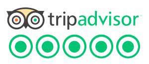 tripadvisor neuseeland rundreisen beste auckland tagesausflug deutsche reiseleiter reiseanbieter beste neuseeland reisen Great Days