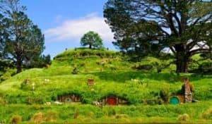 neuseeland hobbiton auenland rundreise tagestour auckland deutsch geführt tageausflüge ausflug