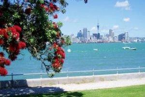 Auckland Tagestour Premium Rundreise Neuseeland Urlaub deutsche Reiseführer Tourguides Private Tours Mietwagenreisen Gruppenreise Flughafen Transfer Neuseelandspezialist