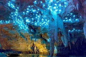 Glühwürmchen Höhlen Neuseeland Rundreise Mietwagen Selbstfahrerreisen Kleingruppenreise deutsch geführt Gruppenreise Neuseelandspezialist Veranstalter Auckland Reiseanbieter