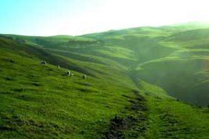 neuseeland individualreise catlins rundreisen selbstfahrer touren individuell kleingruppenreise deutsch geführte neuseelandreise luxusreise erlebnisreisen neuseelandurlaub