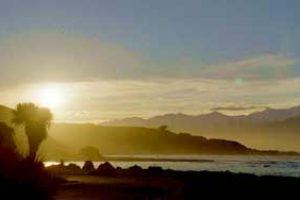neuseeland kaikoura wale rundreise erlebnisreise walbeobachtung neuseelandurlaub deutschsprachig geführte rundreise kleine gruppe individualreise