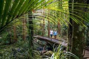 neuseeland wandern hiking wanderurlaub natur erleben neuseelandreise kleine gruppenreise 3 wochen deutsch geführt1